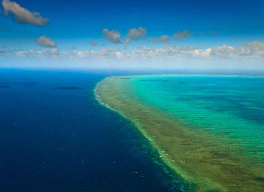 The Great Barrier Reef grows in shallow water, protecting Australia's coast from strong tides.