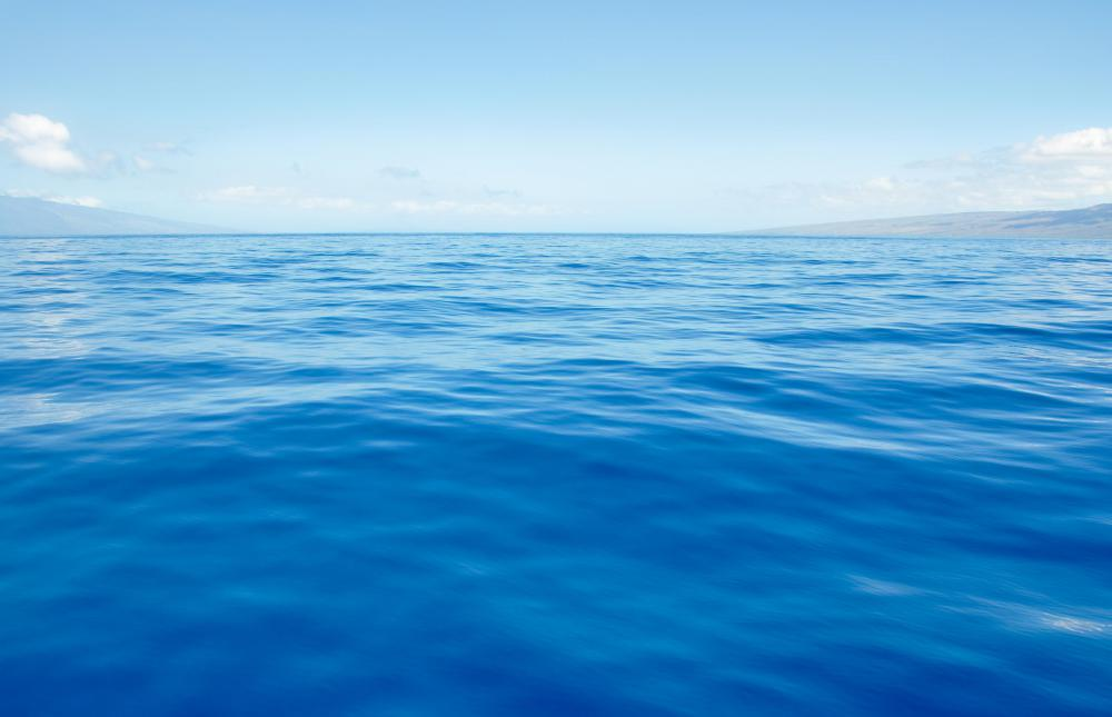 The North Atlantic ocean contains the Sargasso Sea.