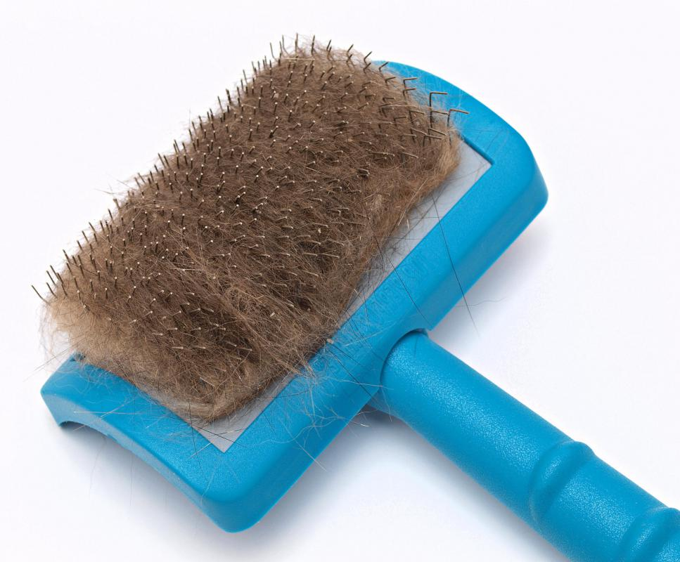 Selecting the right pet brush is an important part of grooming.