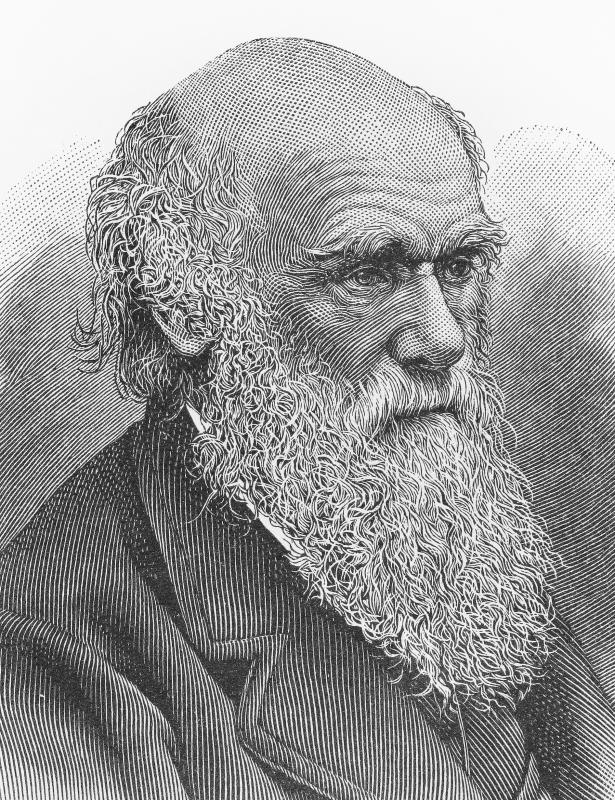 Charles Darwin provided one of the first explanations for how atolls form.