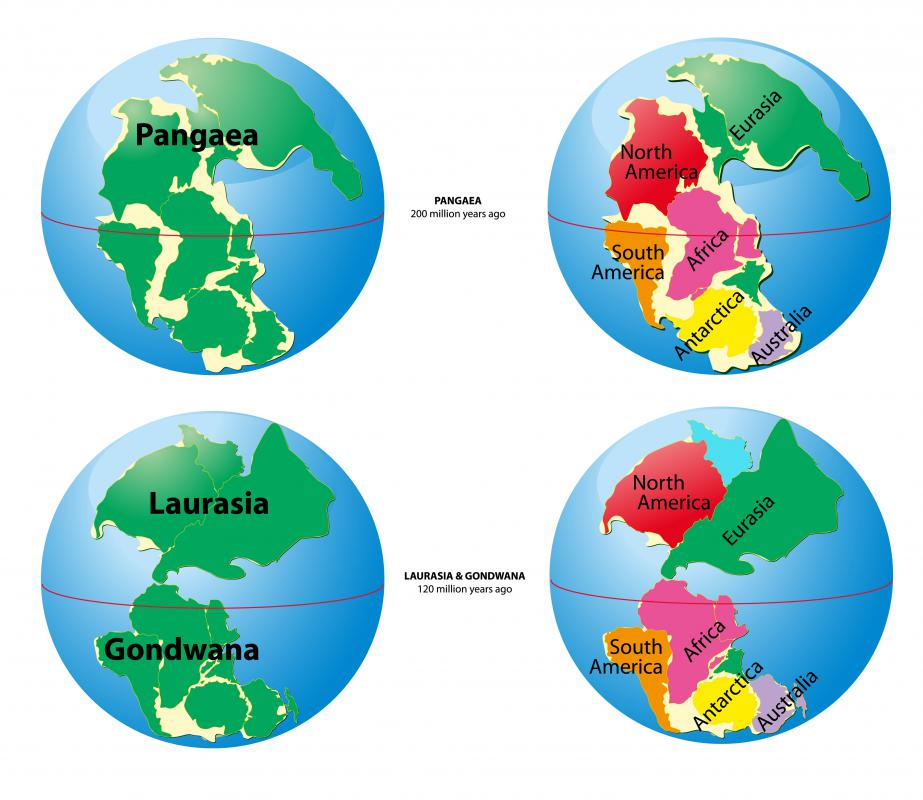 The formation of Pangea (also spelled Pangaea) likely contributed to the Great Dying.