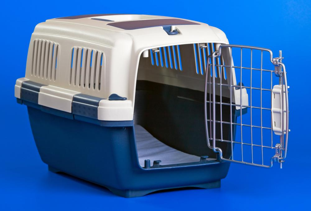 A pet carrier that's approved for airline travel.