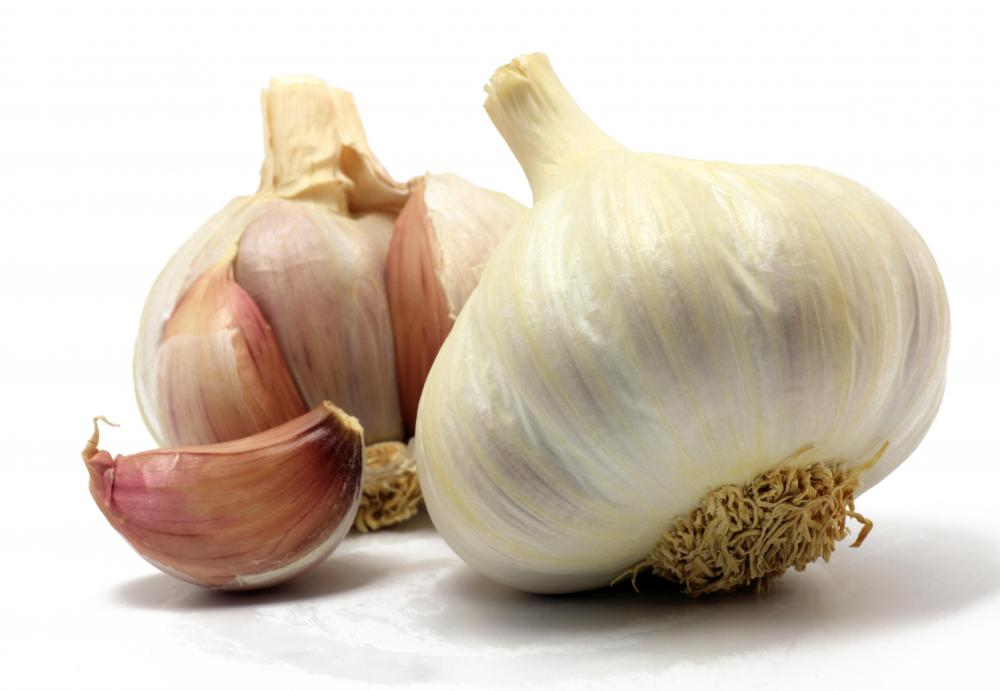 Garlic is not good for cats and dogs, as it may damage red blood cells.