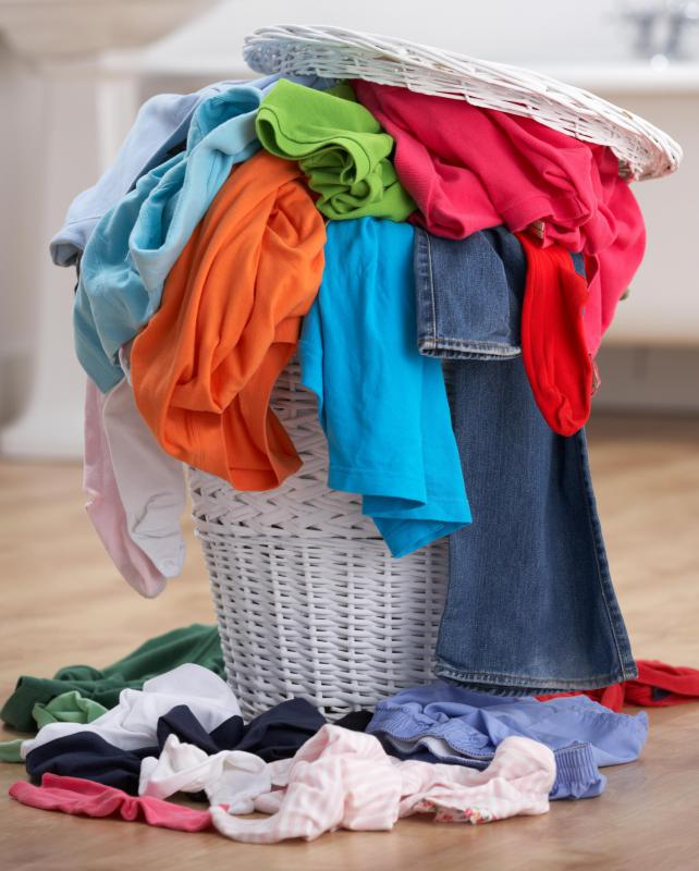 Leaving dirty laundry around may attract fruit flies.