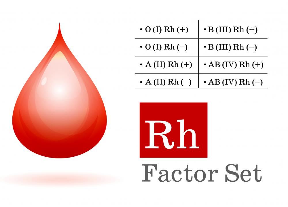 The Rhesus Factor set of blood types, derived from experiments involving Rhesus macaques.