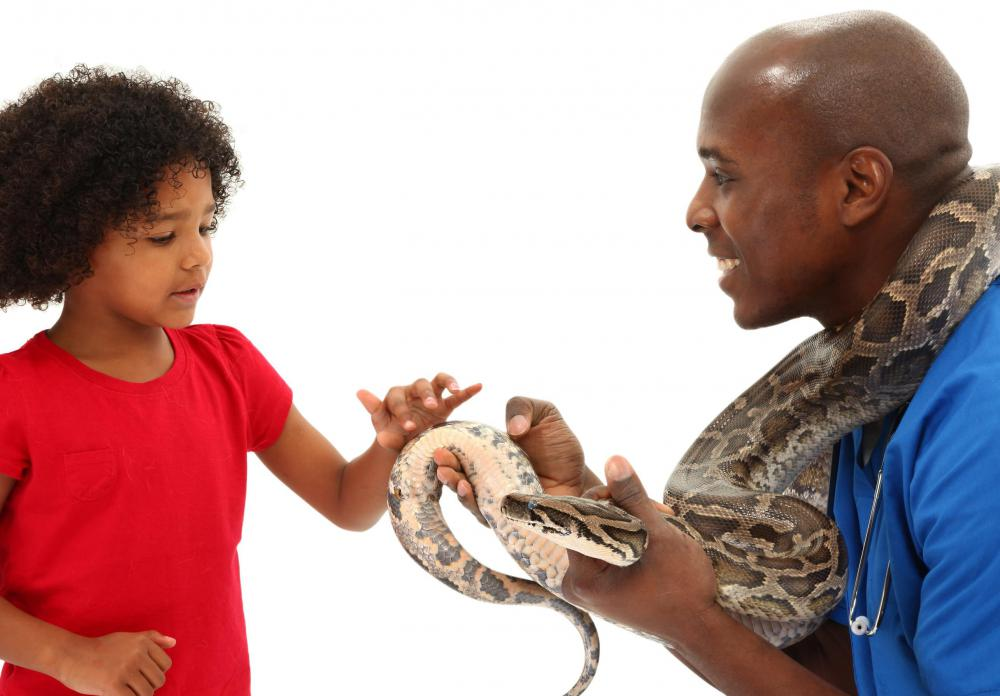 A pet snake may or may not be appropriate for a classroom environment.