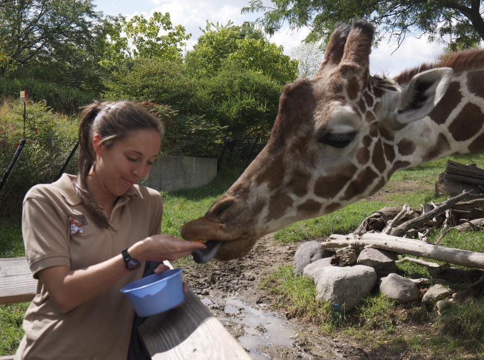 Zookeepers play an active role in a zoo animal's life to help them avoid zoochosis.